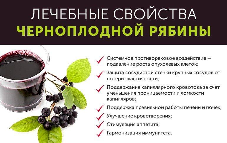 Как принимать черноплодную рябину от давления? Лечебные свойства и рецепты при гипертонии