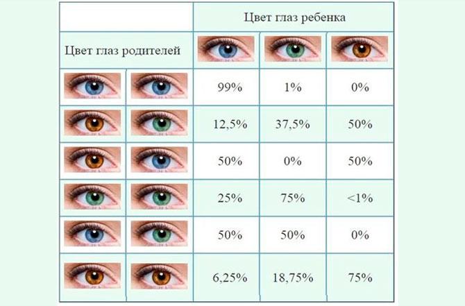 Цвет глаз ребенка в зависимости от цвета у родителей