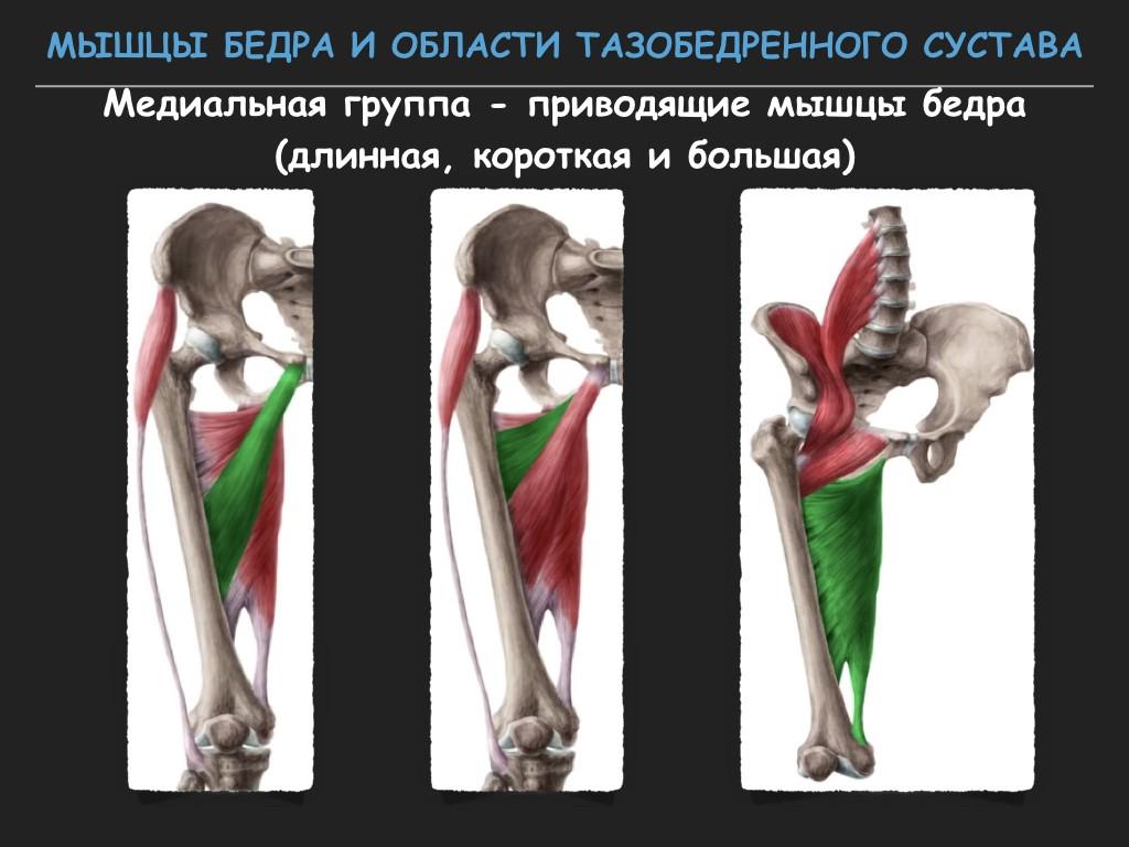 Почему разное давление на правой и левой руке? Причины разницы показаний