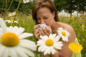 Аллергия на ромашку