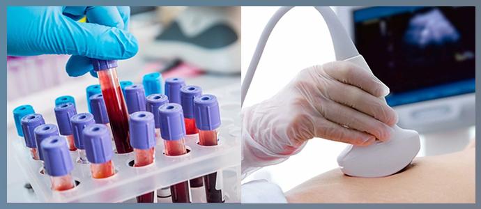 УЗИ, биохимический анализ крови