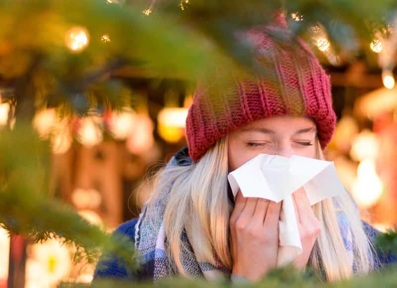 Почему может внезапно возникнуть аллергия на ёлку у взрослого или ребенка?