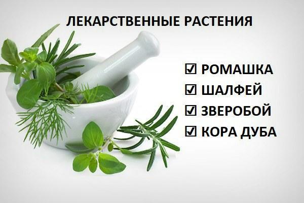 Лекарственные растения для глаз