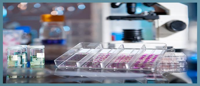 Иммуногистохимический тест