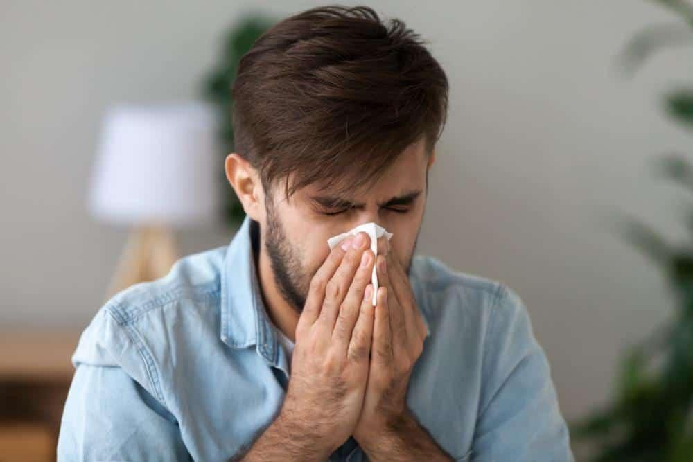 В каких случаях герань может стать причиной аллергии?