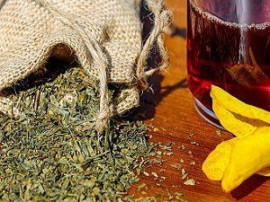 Лечение полипов шейки матки травяными сборами