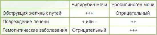 Расшифровка показателей общего анализа мочи (ОАМ)